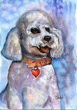 Poodle Puppy Dog Pet Portrait Watercolor NFAC MAY 5x7 Painting Penny StewArt