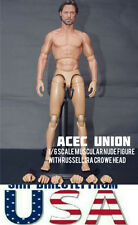 ZC TOYS 1/6 Muscular Nude Figure With Russell Ira Crowe Head TTM19 - USA SELLER