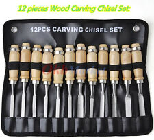 12X Woodworking Tool Kit Wood Carving Chisel Set Creative Crafts Hobby Sculpture