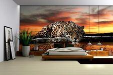 Jaguar wild cat wallpaper for bedroom & livingroom Giant size photo wall murals