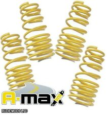 A-MAX Peugeot 106 GTi 1996-2003 25mm Lowering Springs
