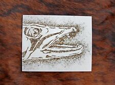 Barracuda Fish Fire Etched GunPowder Art Vintage Picture Fly Fishing Nautical