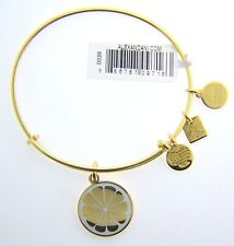 NEW ALEX AND ANI ZEST FOR LIFE II CHARM BANGLE WITH GOLD FINISH 56