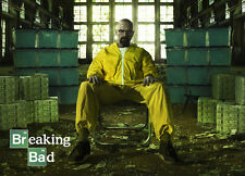 TV POSTER THE BREAKING BAD WALTER ALL HAIL THE KING 24X17 POSTER