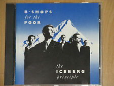 B-SHOPS FOR THE POOR - THE ICEBERG PRINCIPLE