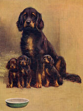GORDON SETTER CHARMING DOG GREETINGS NOTE CARD BEAUTIFUL MUM AND PUPPIES