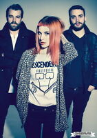 """080 Paramore - American Rock Band Hayley Williams Canvas 14""""x20"""" Poster"""