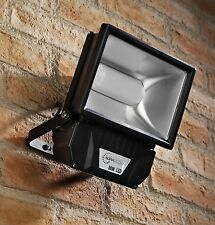 Auraglow 50w LED Flood Light Outdoor Garden Wall Security Lamp, 250w EQV,  Black