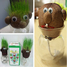 Absorbent Flower Pot Planter Magic Grass Head Hair Herb Plant Doll Pot Kit home