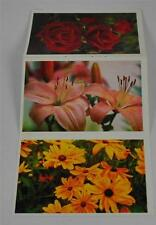Vintage 3 Attached Postcards Michigan Bulb Co 1997 Rose Lily Black-Eyed Susan