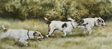 "JACK RUSSELL TERRIER JRT DOG FINE ART LIMITED EDITION PRINT  ""Muts on a Mission"""