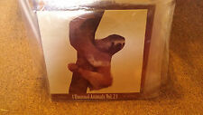 """Castanets/Dirty Projectors Sealed 10"""" LP Unusual Animals Vol 2 Asthmatic Kitty"""