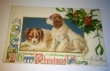 Antique American Dog / Pet Lithograph A Happy Christmas! Holiday Xmas Postcard!