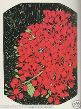 FLOWERS of the RAINBOW~1926~ Don Blanding ~ HAWAII Verse and Colored Images