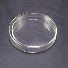 Petri dishes with lids clear glass 60mm new x5