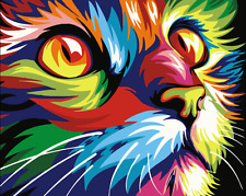 "16x20"" DIY Acrylic Paint By Number kit Oil Painting On Canvas Colorful Cat 1197"