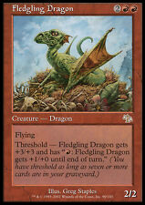 MTG FLEDGLING DRAGON ASIAN - DRAGO NOVELLO - JUD - MAGIC