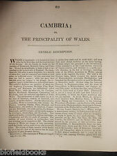 CAMBRIA/WALES - James Dugdale - 1819 -  British Traveller Disbound Section