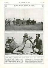1917 Mule-wagon Girdles Anzac Camelry Hospital Barge Hand-grenades Explode