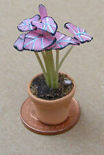 1:12 Scale Pink Plant In A Pot Dolls House Miniature Garden Flower Accessory P6