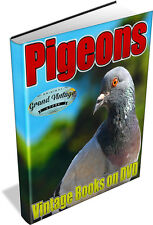 PIGEONS 55 Vintage Books on DVD Homing,Racing,Dovecotes,Breeding,Squabs,Rearing