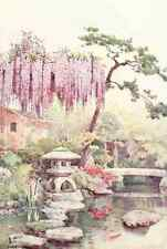 A4 Photo Du Cane Ella 1874 1943 Wisteria in a Kyoto Garden Flowers & Gardens of