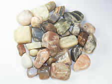1 lb Mixed Size Colors MOONSTONE Tumbled Stones BULK Healing Metaphysical