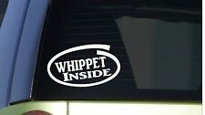 "Whippet Inside *I273* 8"" wide Sticker decal dog dog racing muzzle greyhound"