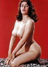 60s Nude Pinup Ann Austin posing mammoth breasts 8 x 10 Photograph