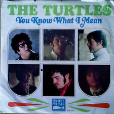 THE TURTLES - YOU KNOW WHAT I MEAN - WHITE WHALE 45 + PICTURE SLEEVE