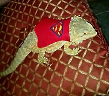 Lil' Bestie Superman Cape for Bearded Dragons