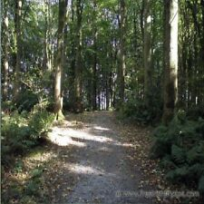 D050  SOUNDS OF NATURE WOODLAND PATHWAY  CALMING RELAXATION AUDIO CD