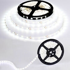 5M 3528 Waterproof LED Flexible Light Strip 12V with 300 SMD LED Cool Flash Sale
