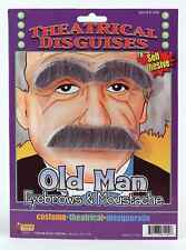 Old Man Eyebrows and Moustache Gray Costume Facial Hair Mustache Bushy Mens Grey