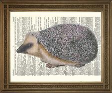 Vintage Erizo Ilustración: Antiguo Diccionario página Animal impresión de arte