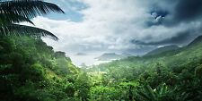 GUIDED MEDITATION CD JOURNEY INTO A RAINFOREST, DISCOVER AN ANCIENT CITY