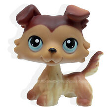 #58 Rera Littlest Pet Shop Brown Collie Dog Puppy Blue Eyes LPS Animal Toy NEW