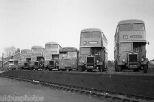 Lincoln City Transport buses Depot Yard Bus Photo