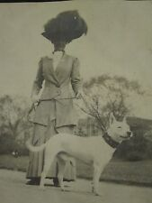ANTIQUE EDWARDIAN LADY DOG OWNER WHITE AMERICAN PITBULL FOLK ART COLLAR PHOTO
