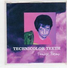 (FS71) Technicolor Teeth, Teenage Pagans - 2012 DJ CD