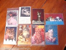 Lot of 8 Adorable Cat Feline Photo Picture Unused Post Cards