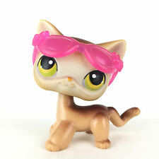 Authentic Littlest Petshop 19 Cat Short Hair Kitty Kitten / Chat Europeen LPS.