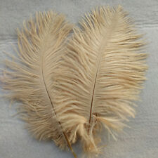 Beautiful 10 pcs 15-20 cm / 6-8 inches brown natural ostrich feathers decoration