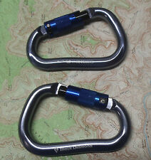 Black Diamond RockLock Twistlock Carabiners 2PAK Climbing Big Wall Rock Locking
