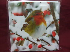 Sense Charity Christmas Cards ROBIN IN THE BERRIES IN THE SNOW Pack of 10