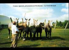 LA FERTE-BERNARD (72) COMICE AGRICOLE / Présentation des CHEVAUX PERCHERONS 2002