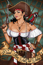 112 SEXY ART DECAL STICKER PIN UP GIRL CUTE FEMALE PIRATE BIG BREAST BOOBS HOT
