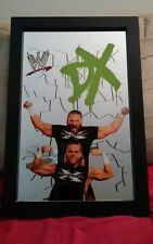 """Officially Licensed - WWE D-GENERATION X Framed Bar Mirror -13"""" x 19 1/4"""" new"""