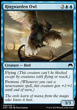 MTG 4x RINGWARDEN OWL - GUFO CUSTODE DELL'ANELLO - ORI - MAGIC