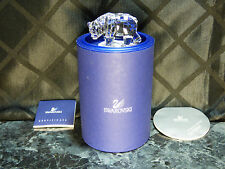 Swarovski Sister Bear with box, 2006 SCS members' exclusive